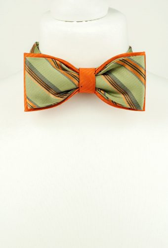 Sophisticated Bow Tie