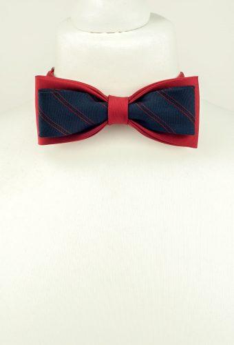 Elegant Double Bow Tie