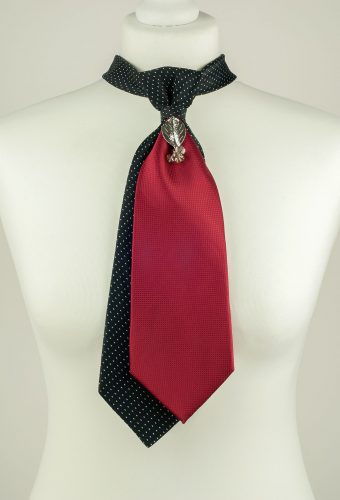 Black and Burgundy Colour Necktie