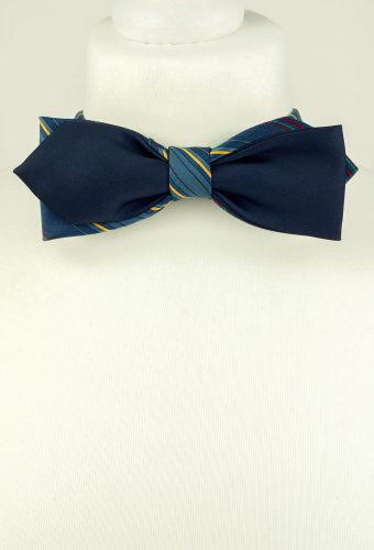Blue Colour Diamond Point Bow Tie