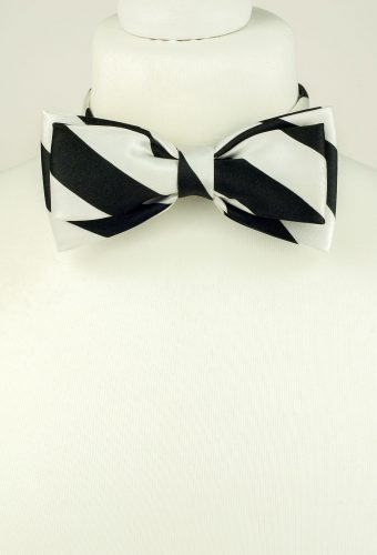 Striped Double Bow Tie