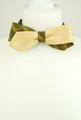 Bright Colour Bow Tie