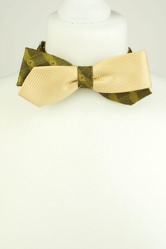 Bright Colour Bow Tie